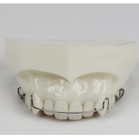 Dental Orthodontic Demonstration Model for Maintenance M3007